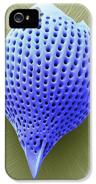 Radiolarian IPhone 5 / 5s Case by Steve Gschmeissner