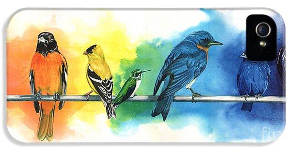 Rainbow Birds IPhone 5 / 5s Case by Antony Galbraith