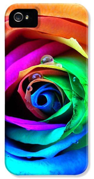 Gay iPhone 5 Cases - Rainbow Rose iPhone 5 Case by Juergen Weiss