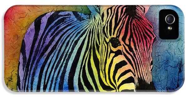 Zoo iPhone 5 Cases - Rainbow Zebra iPhone 5 Case by Hailey E Herrera