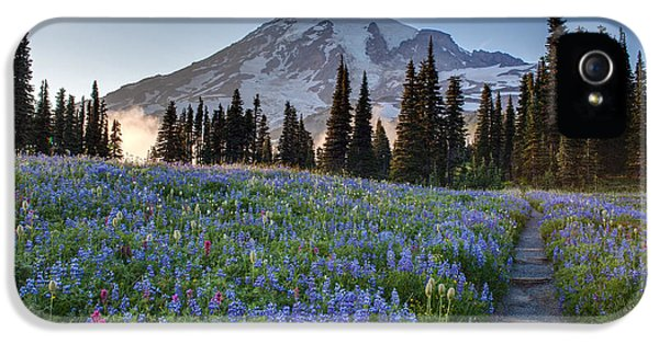 Mount Rainier iPhone 5 Cases - Rainier Evening Lupine Fields iPhone 5 Case by Mike Reid