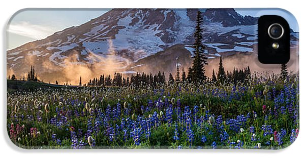Mount Rainier iPhone 5 Cases - Rainier Wildflower Meadows Pano iPhone 5 Case by Mike Reid