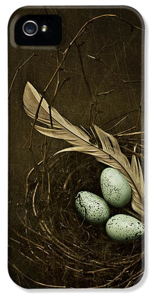 Build iPhone 5 Cases - Rebirth iPhone 5 Case by Amy Weiss
