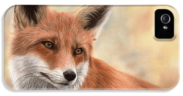 Red Fox iPhone 5 Cases - Red Fox Painting iPhone 5 Case by Rachel Stribbling