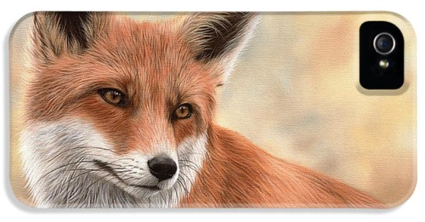 Fox iPhone 5 Cases - Red Fox Painting iPhone 5 Case by Rachel Stribbling