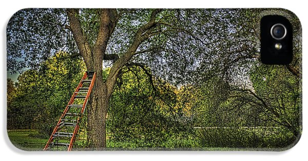 Ladder iPhone 5 Cases - Red Ladder and Oak iPhone 5 Case by Marvin Spates