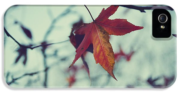 Environment Concept Art iPhone 5 Cases - Red leaf iPhone 5 Case by Jelena Jovanovic