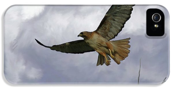 Red Tailed Hawk iPhone 5 Cases - Red Tail Hawk Digital Freehand Painting 1 iPhone 5 Case by Ernie Echols