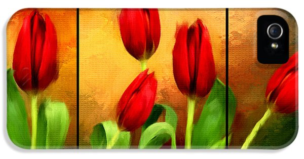 Tulips iPhone 5 Cases - Red Tulips Triptych iPhone 5 Case by Lourry Legarde