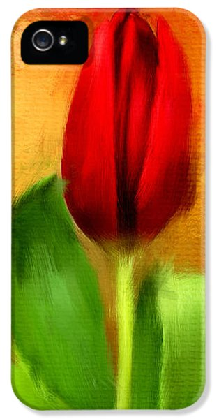Tulips iPhone 5 Cases - Red Tulips Triptych Section 1 iPhone 5 Case by Lourry Legarde