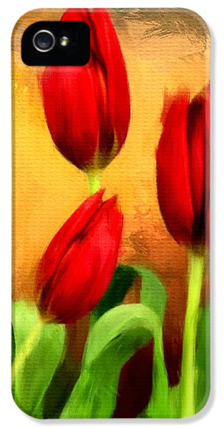 Tulips iPhone 5 Cases - Red Tulips Triptych Section 2 iPhone 5 Case by Lourry Legarde