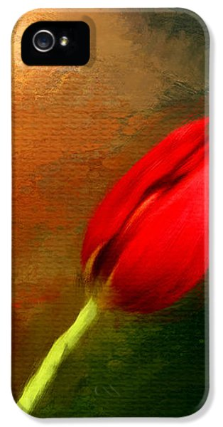 Tulips iPhone 5 Cases - Red Tulips Triptych Section 3 iPhone 5 Case by Lourry Legarde