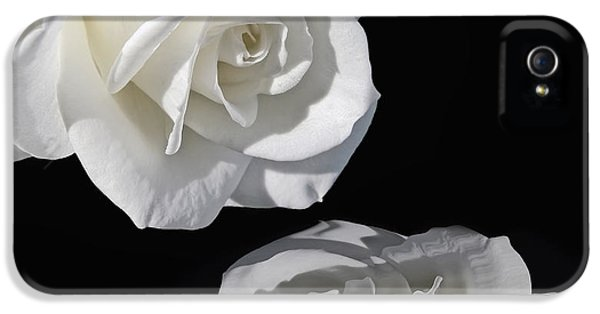 Ivory Rose iPhone 5 Cases - Reflection of my Love White Rose iPhone 5 Case by Jennie Marie Schell
