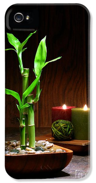 Relaxation And Meditation  IPhone 5 / 5s Case by Olivier Le Queinec