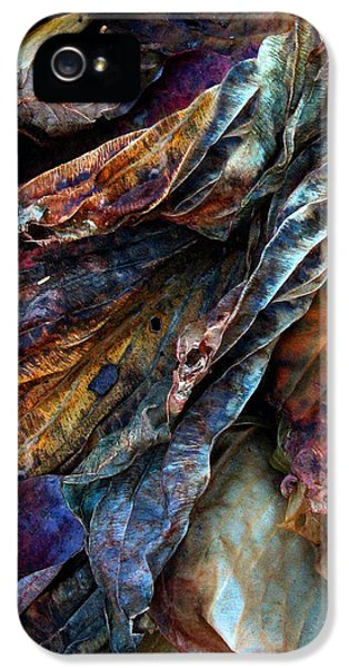 Decay iPhone 5 Cases - Remnants iPhone 5 Case by Jessica Jenney