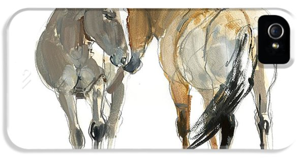 Meeting iPhone 5 Cases - Rencontre Przewalski, 2013, Watercolour And Pigment On Paper iPhone 5 Case by Mark Adlington