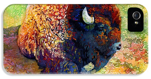 Modern Western iPhone 5 Cases - Resting Bison iPhone 5 Case by Hailey E Herrera