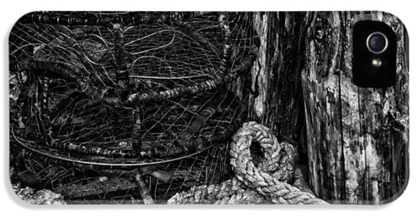 Crabbing iPhone 5 Cases - Retired iPhone 5 Case by Mark Kiver