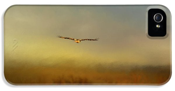 Hawk iPhone 5 Cases - Retreating Red Tail iPhone 5 Case by Jai Johnson