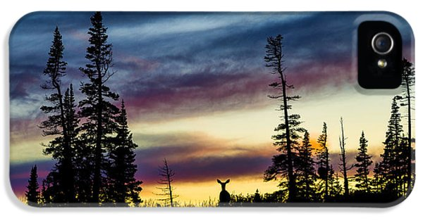 National Monuments iPhone 5 Cases - Ridge Sihouette iPhone 5 Case by Chad Dutson