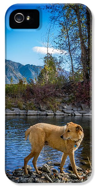 Dexter Prints iPhone 5 Cases - River Walk iPhone 5 Case by Jeff Christensen