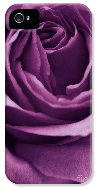 Roses iPhone 5 Cases - Romance III iPhone 5 Case by Angela Doelling AD DESIGN Photo and PhotoArt