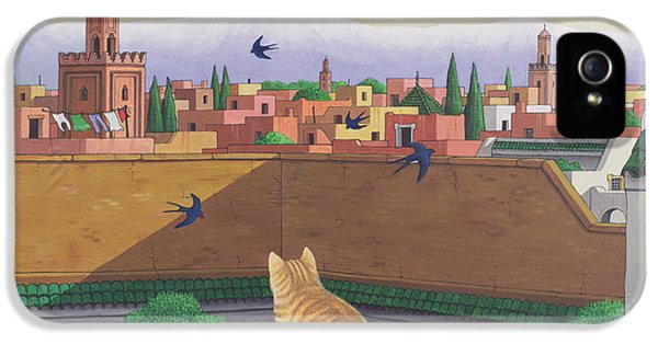 Rooftops In Marrakesh IPhone 5 / 5s Case by Larry Smart