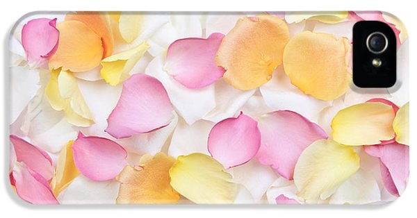 Tenderness iPhone 5 Cases - Rose petals background iPhone 5 Case by Elena Elisseeva