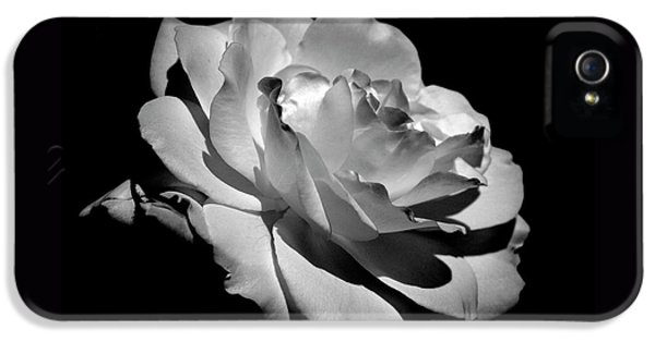 Rose IPhone 5 / 5s Case by Rona Black