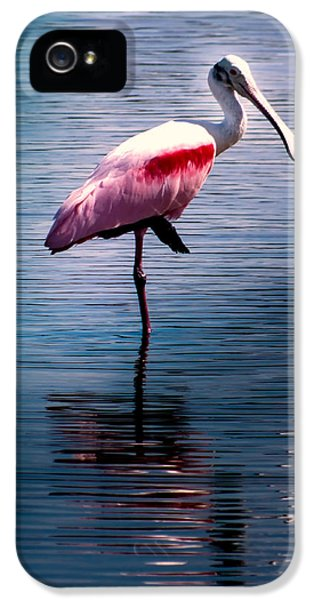 Roseate Spoonbill IPhone 5 / 5s Case by Karen Wiles