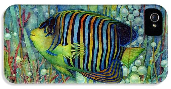 Royal Angelfish IPhone 5 / 5s Case by Hailey E Herrera