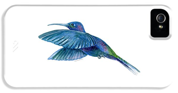 Sabrewing Hummingbird IPhone 5 / 5s Case by Amy Kirkpatrick