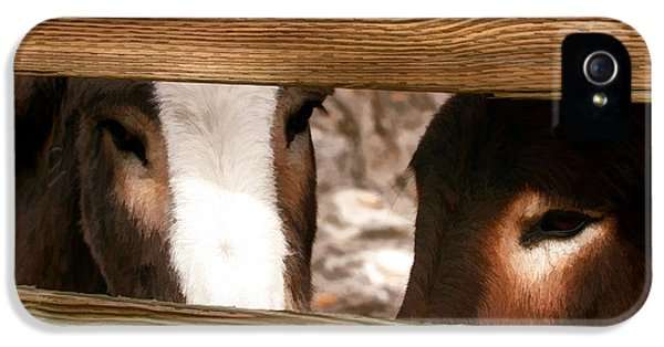 Donkey iPhone 5 Cases - Sad Eyes iPhone 5 Case by Donna Kennedy