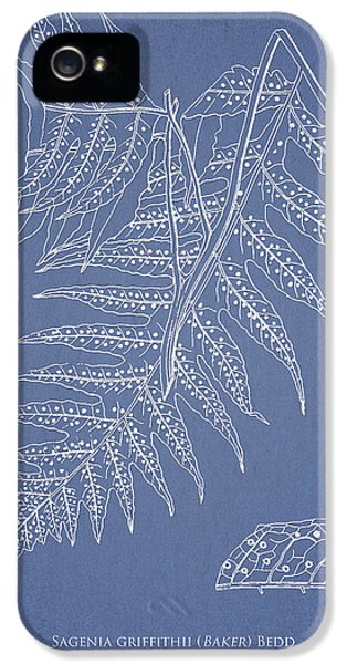 Fern iPhone 5 Cases - Sagenia griffithii iPhone 5 Case by Aged Pixel