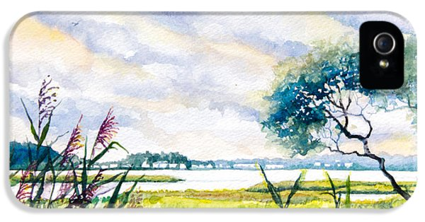Crabbing iPhone 5 Cases - Salt Marshes Delaware iPhone 5 Case by Patricia Allingham Carlson