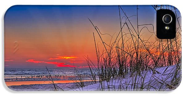 Sand And Sea IPhone 5 / 5s Case by Marvin Spates