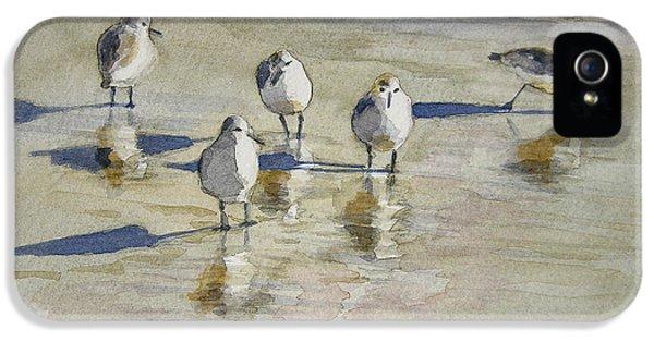 Sandpipers 2 Watercolor 5-13-12 Julianne Felton IPhone 5 / 5s Case by Julianne Felton