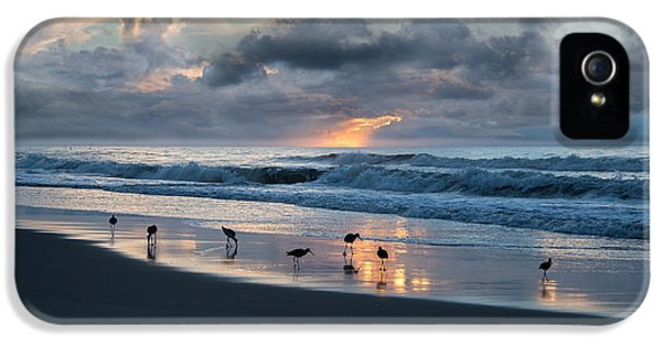 Sandpipers In Paradise IPhone 5 / 5s Case by Betsy Knapp