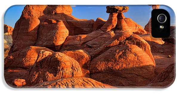 National Monuments iPhone 5 Cases - Sandstone Castle iPhone 5 Case by Inge Johnsson