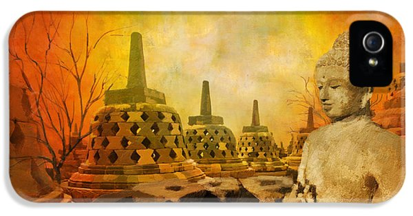 Color Effect iPhone 5 Cases - Sborobudur Temple Compounds iPhone 5 Case by Catf
