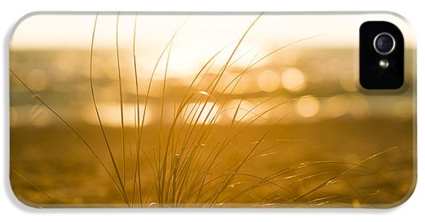 Sea Oats Sunset IPhone 5 / 5s Case by Sebastian Musial