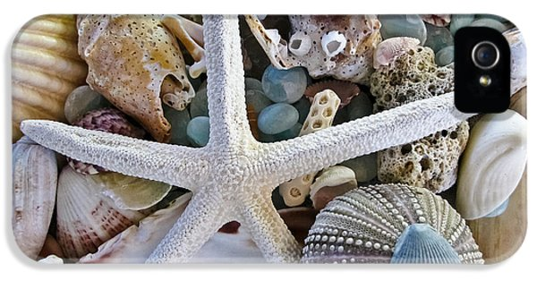Sea Treasure IPhone 5 / 5s Case by Colleen Kammerer