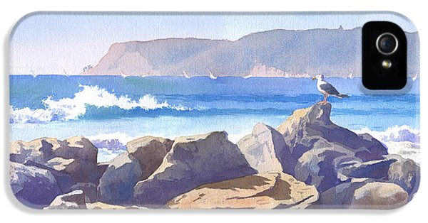 Seagull And Point Loma IPhone 5 / 5s Case by Mary Helmreich