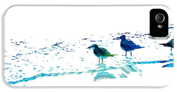 Seagull Art - On The Shore - By Sharon Cummings IPhone 5 / 5s Case by Sharon Cummings