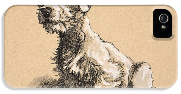 Sealyham IPhone 5 / 5s Case by Cecil Charles Windsor Aldin