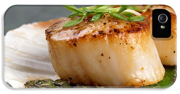 Sears iPhone 5 Cases - Seared scallops iPhone 5 Case by Jane Rix