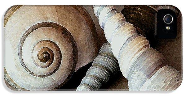 Three iPhone 5 Cases - Seashells Spectacular No 24 iPhone 5 Case by Ben and Raisa Gertsberg