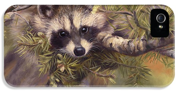 Seeking Mischief IPhone 5 / 5s Case by Lucie Bilodeau