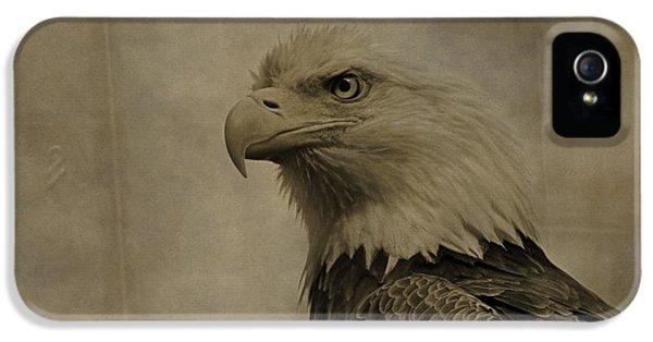 Eagle iPhone 5 Cases - Sepia Bald Eagle Portrait iPhone 5 Case by Dan Sproul