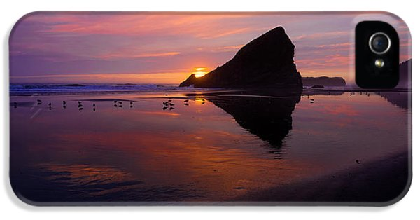 Oregon Coast iPhone 5 Cases - Serenade iPhone 5 Case by Chad Dutson